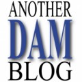 Another DAM blog