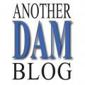 Another DAM blog