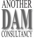 Another DAM Consultancy